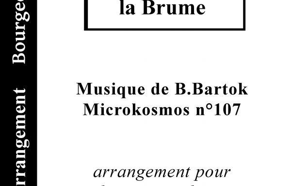 Microkosmos n°107: Mélodie dans la Brume