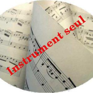 Instrument seul
